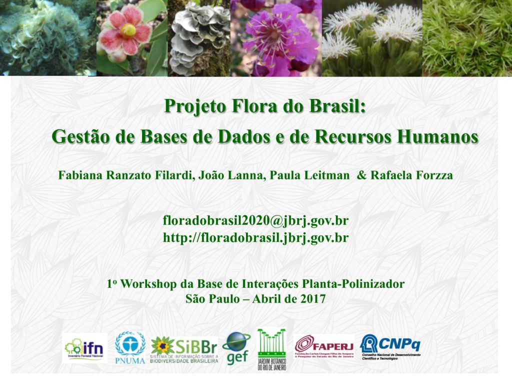 thumbnail of 1. REBIPP_Apresentação 1o Workshop da Base de Interações Planta-Polinizador
